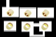 Грузики вариатора 16*13 5,0гр. (6шт) 139QMB, DIO 4620753534384